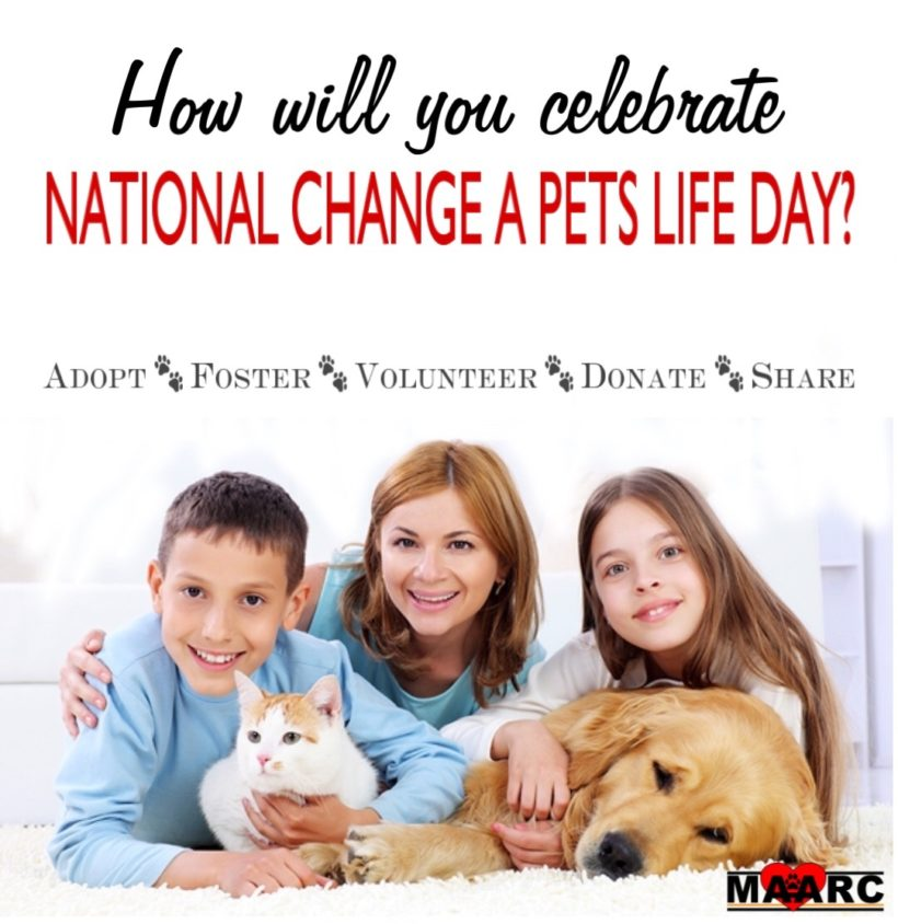 National Change a Pets Life Day